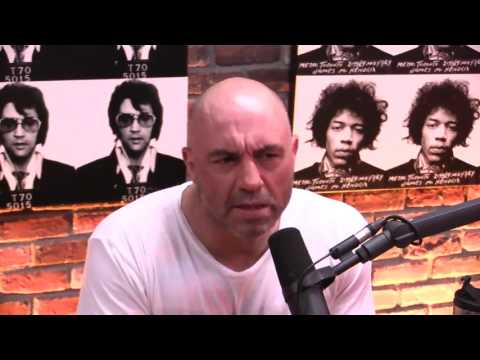 """Bret Weinstein Explains the Evergreen """"Day of Absence"""" Controversy - The Joe Rogan Experience"""