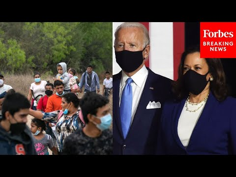 """""""Biden border crisis is a travesty"""": GOP Rep tears administration's response to migrant surge"""