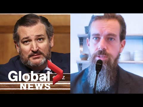 US election: Jack Dorsey grilled by Ted Cruz on Twitter's voter fraud disclaimer