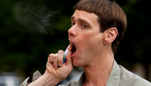 HiT Movie Review: 'Dumb and Dumber To'