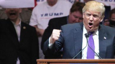 Photo of Hollywood Declares War on Donald Trump