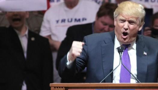 Hollywood Declares War on Donald Trump