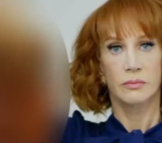 kathy griffin trump severed head media to blame