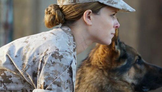 Studio Honors Military with Free 'Megan Leavey' Screenings