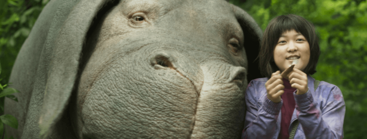 Okja movie review netflix