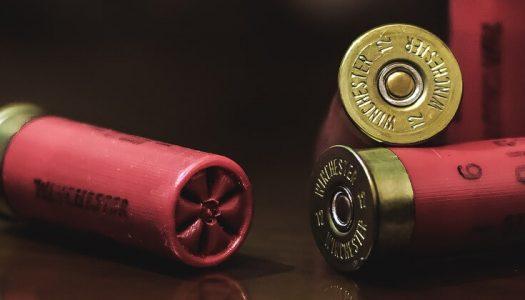 Celebrities Blame GOP, NRA for School Shooting