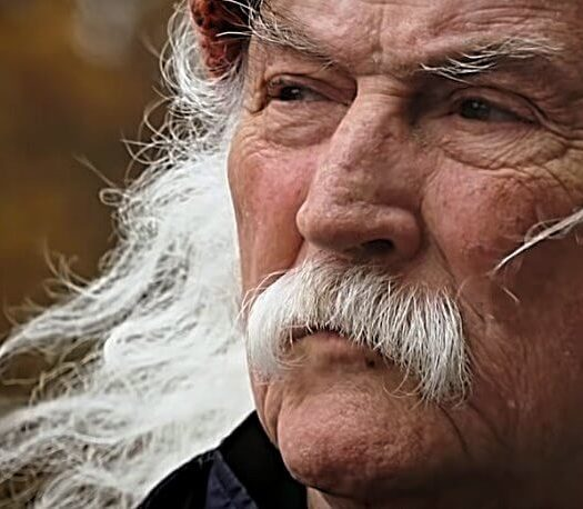 David Crosby Trump pee tape op ed