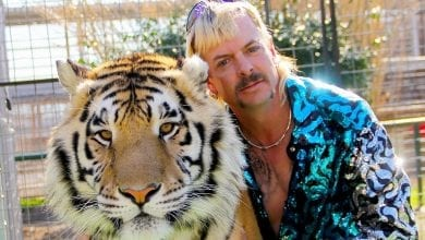 Photo of 7 Undeniable Life Lessons from 'Tiger King'