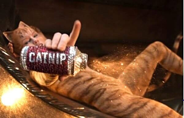 Taylor Swift holds catnip in Cats
