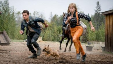 Photo of 'Chaos Walking' Deserves Your Respect