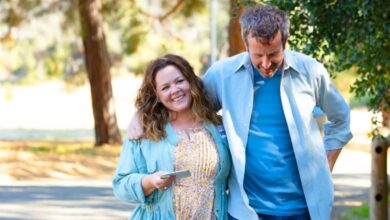 starling review melissa mccarthy chris odowd
